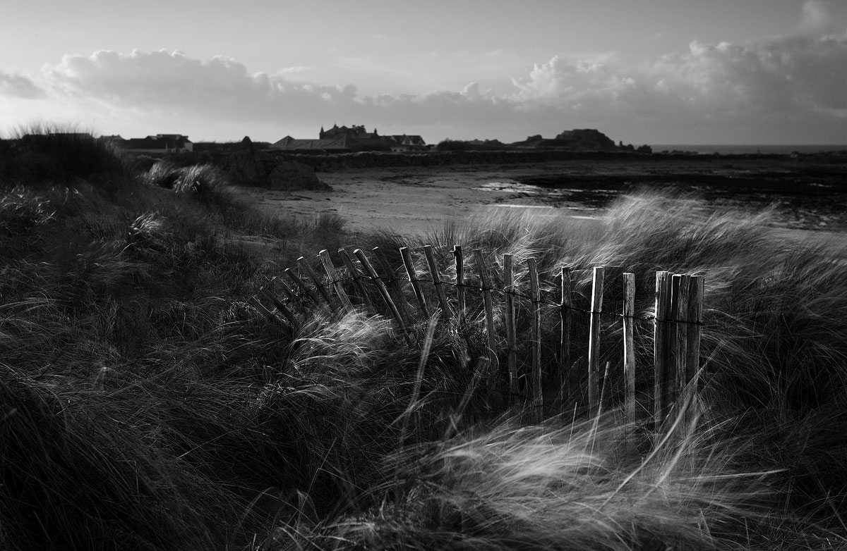 Black and white photo of a sand dune fence at Port Soif, Guernsey.
